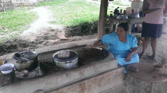 Agouti Cacao Farm : Cocoa Demonstration