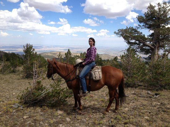 Allen's Diamond 4 Ranch: Cowgirl and me