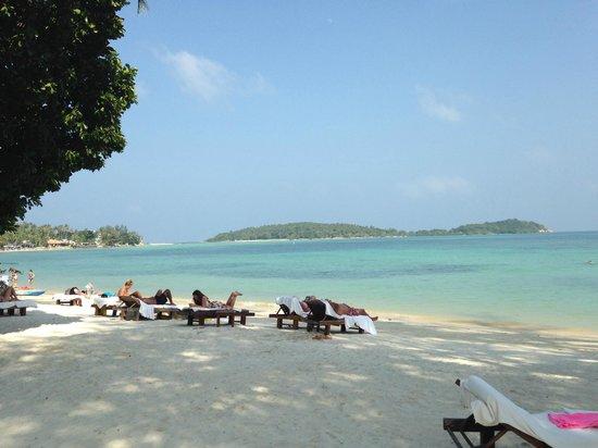 Amari Koh Samui: пляж