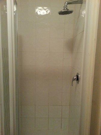 Premier West Hotel : shower