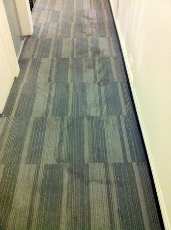 38 Bath Street Serviced Apartments: filthy carpets