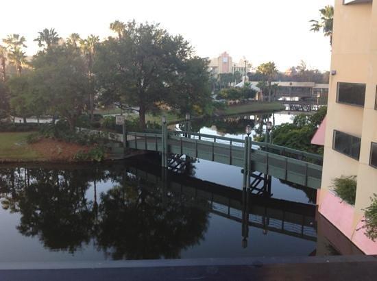 Hilton Orlando Buena Vista Palace Disney Springs : walkway to pool