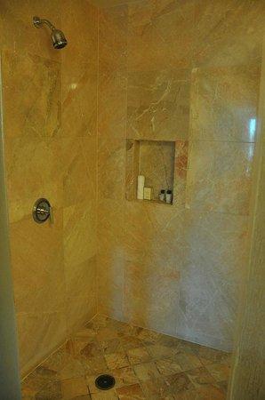 Trump International Hotel Las Vegas: My shower