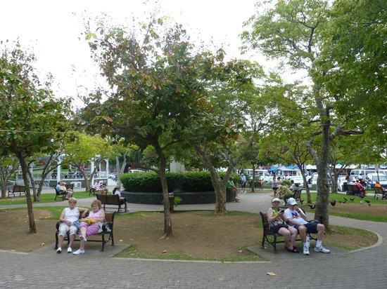 Emancipation Garden : The park