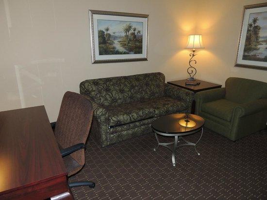 Buena Vista Suites: Living de la habitación