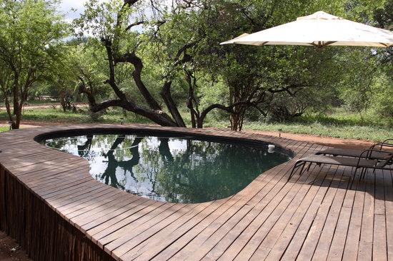 Mvuradona Safari Lodge : Pool