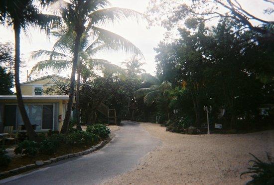 Bay Harbor Lodge : Resort
