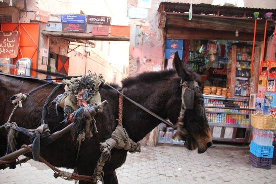 Riad Abaca Badra: entrée de la ruelle amenant au riad