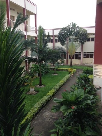 King's Conference Centre : Beautiful grounds with fan palm trees