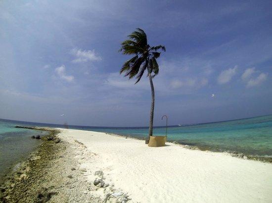 Gili Lankanfushi Maldives : one palm island