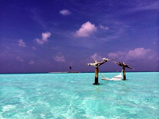 Gili Lankanfushi Maldives : hammock with one palm island in the background