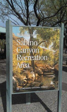 Sabino Canyon: Welcome