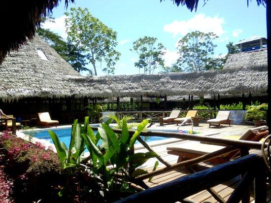 Heliconia Amazon River Lodge: Alrededores de la piscina