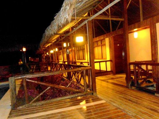 Heliconia Amazon River Lodge: Alrededores del lodge