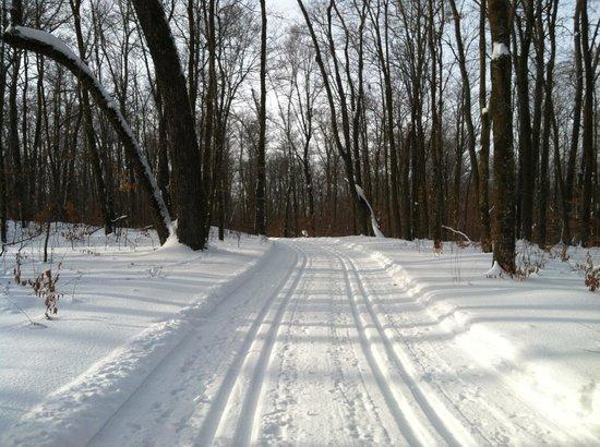 Callaway, MN: Sukkerbush ski trail