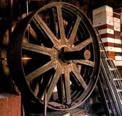 Ely's Mill : Main pulley for waterwheel