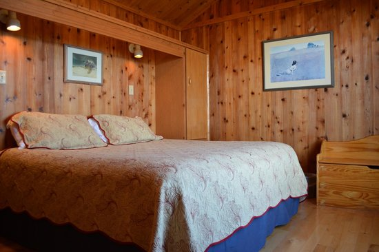 Black Walnut Point Inn : Our cabin bedrooms have king beds with an unobstructed view of the sunrise over the Choptank Riv