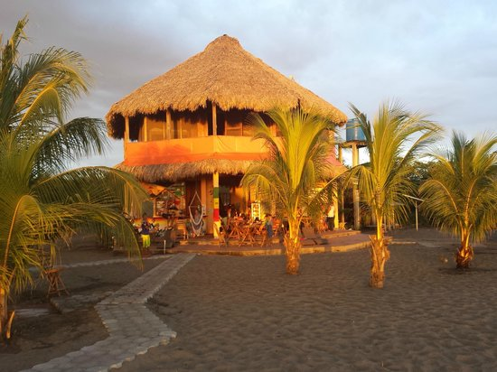 Surfing Turtle Lodge: The amazing bungalow <3