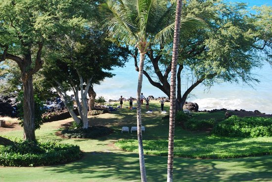 Hapuna Beach Prince Hotel : Morning yoga class at Turtle Cove