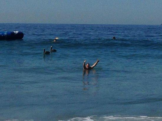 Hyatt Ziva Puerto Vallarta: Enjoying the waves
