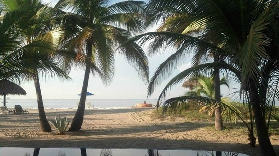 Beach at Treetops Bungalows