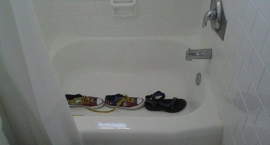 "Coconut Inn : ""Foot Bath"".... haha.  Fine for a shower but not a bath unless you're shorter the 4'"