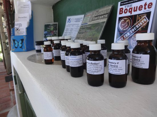 Cloud Forest Botanicals: Wonderful tincture products for sale.