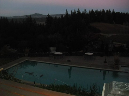 Pezzi King Winery: View of pool