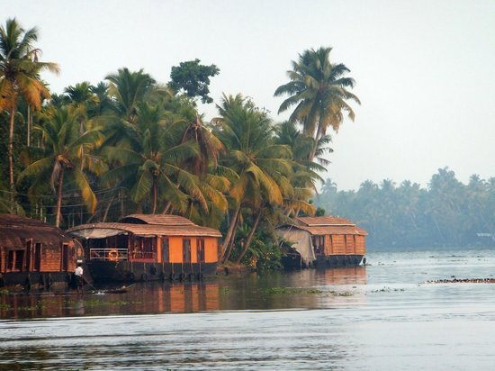 Kait's Home - Farm Life Resorts: Some houseboats on the backwaters