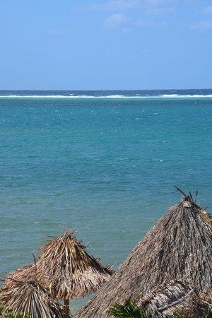 Turquoise Bay Dive & Beach Resort : EL mar