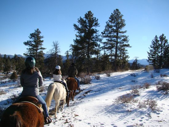 Sundance Trail Guest & Dude Ranch : Riding through the Roosevelt National Forest