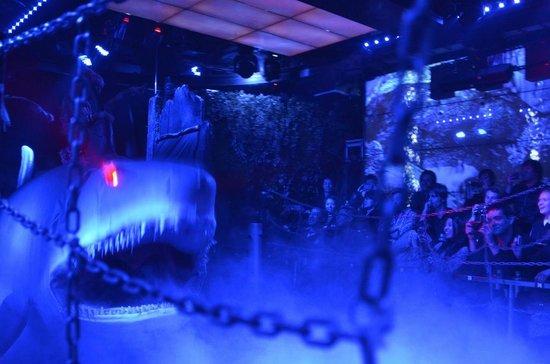 Robot Restaurant: Shark Attack