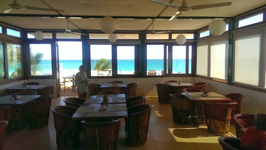 Ventana Windsports B&B: restaurant