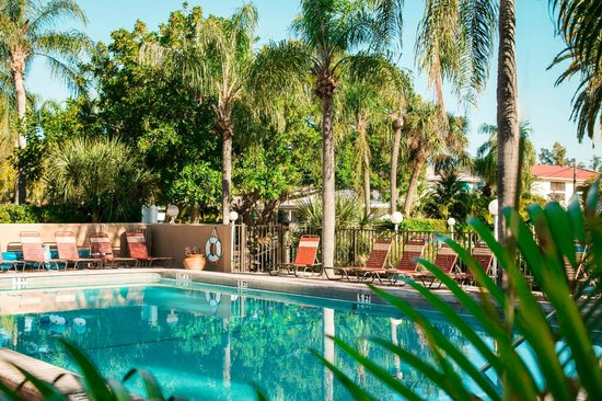 Tropical Beach Resorts : Two refreshing pools with lush greenery and tropical vibes!