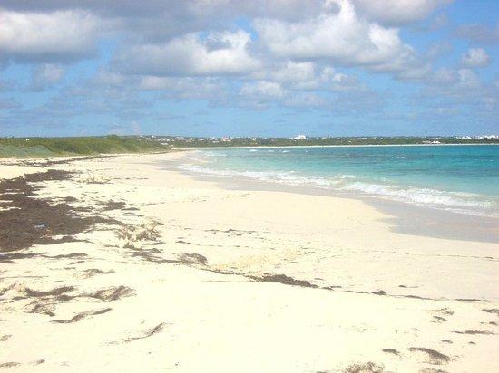 Maundays Bay : Cove Bay