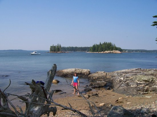 Milbridge, ME: Maine Coast Island from Lobster Picnic