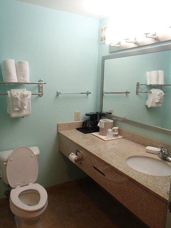 BEST WESTERN PLUS Glen Allen Inn: Nice bathroom