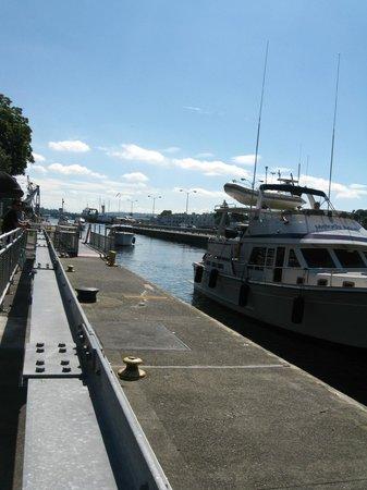 Hiram M. Chittenden Locks : hiram locks