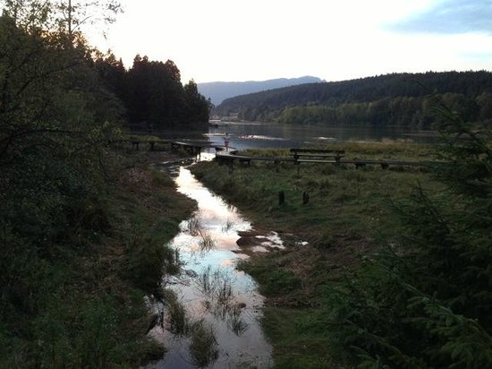 Mainstay Oasis Bed and Breakfast : Port Moody Running Trails to Rocky Point Park