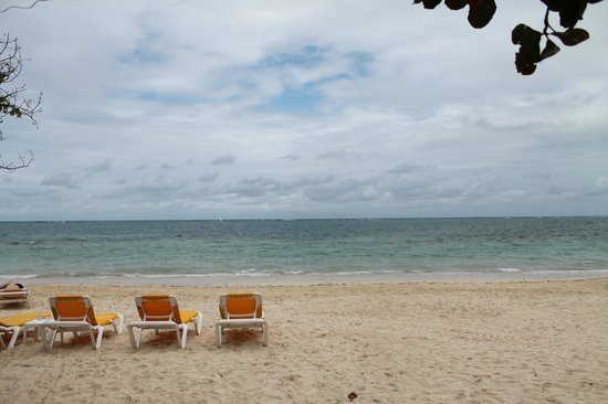 Iberostar Grand Hotel Rose Hall : The Beach
