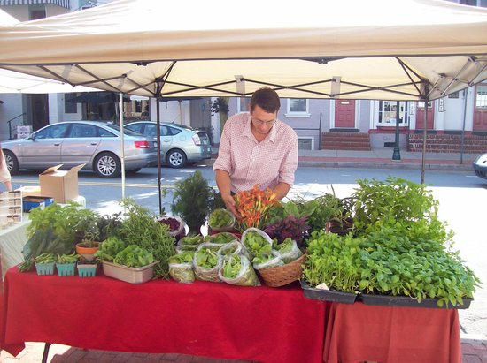 Emma's Food for Life: One of our local produce providers at the farmers' market!