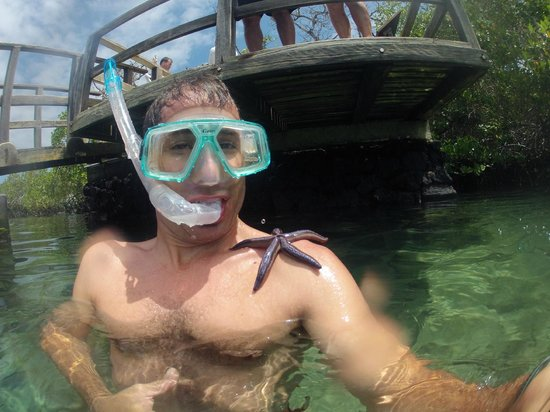 Concha de Perla : Snorkeling