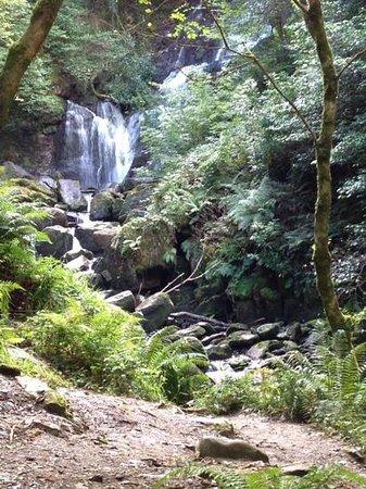 Parque Nacional de Killarney: Torc Waterfall