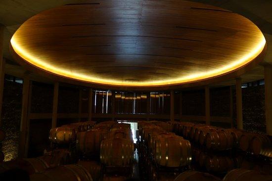 Hotel La Casona de Vina Matetic : interior of wine cellar