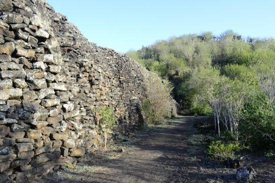 The Wall of Tears: el muro