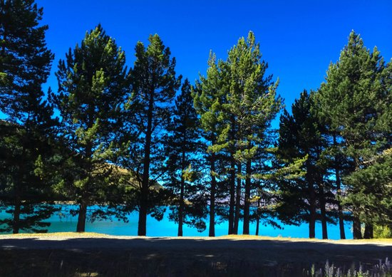 Lake Tekapo Motels & Holiday Park: The scenic path few minutes from our motel unit
