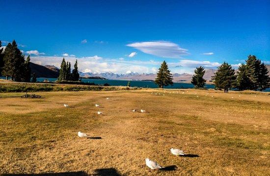 Lake Tekapo Motels & Holiday Park : The scenery around the Village centre