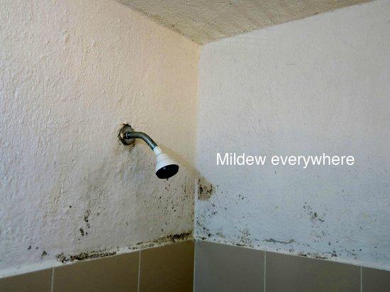 Maya Bric Hotel: Bathroom