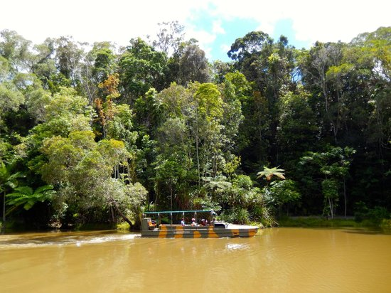 Parque Natural Rainforestation: Cruising in the lagoon