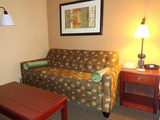 Hampton Inn Lagrange near Callaway Gardens: sofa in room